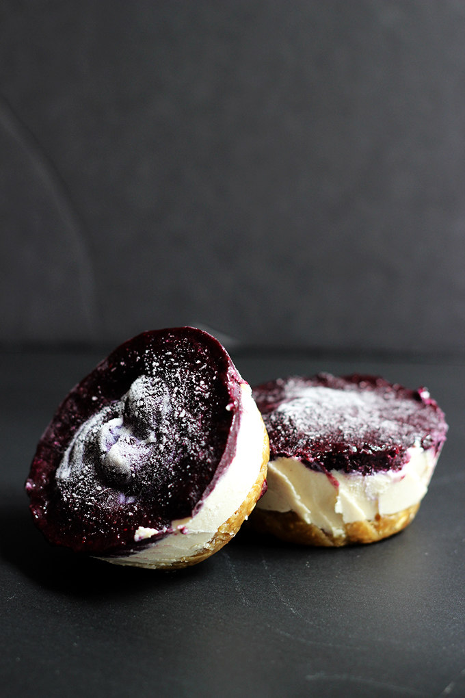 Vegan Mini Blueberry Cheesecakes | Dietitian Debbie