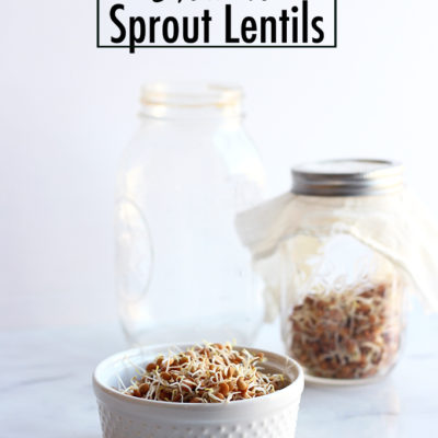 How to Sprout Lentils