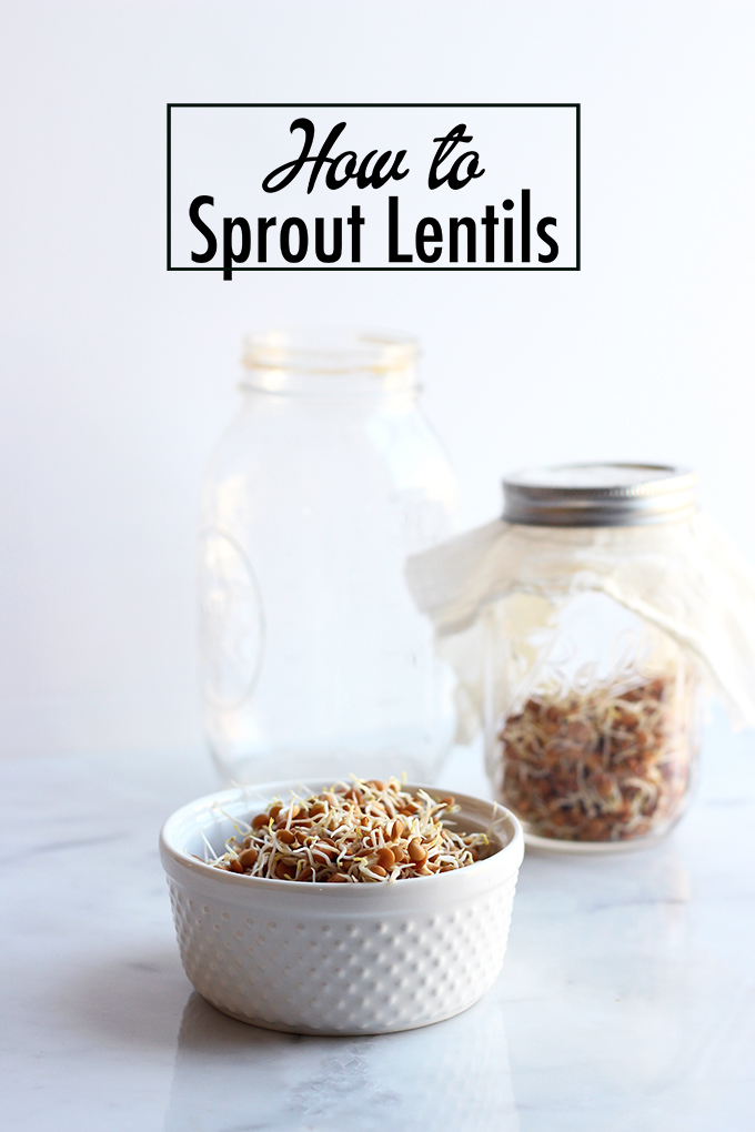 How to Sprout Lentils | Dietitian Debbie Dishes