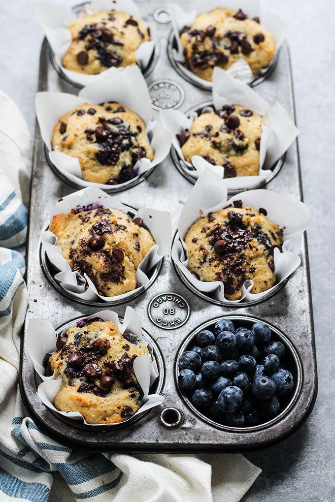 Blueberry Chocolate Muffins made with Greek yogurt